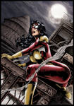 Spiderwoman Night