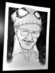 R.I.P. Stan Lee - Marcio Abreu by MARCIOABREU7