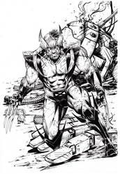 Wolverine - Marcio Abreu by MARCIOABREU7
