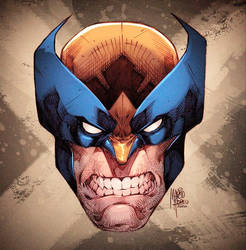 Wolverine Colors