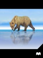 The Bear by JonNunez