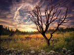 Sunset Digi-Painting
