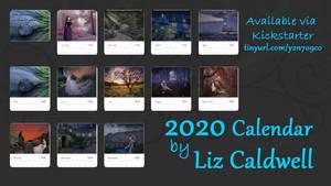 2020 Calendar Feat. Art by Liz