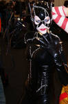 I Am Catwoman Hear Me Roar.