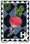 Radish - Food Stamp