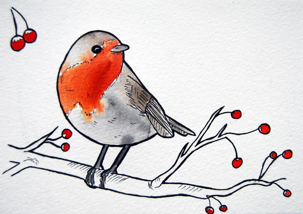 robin bird by moy a on deviantart. Black Bedroom Furniture Sets. Home Design Ideas