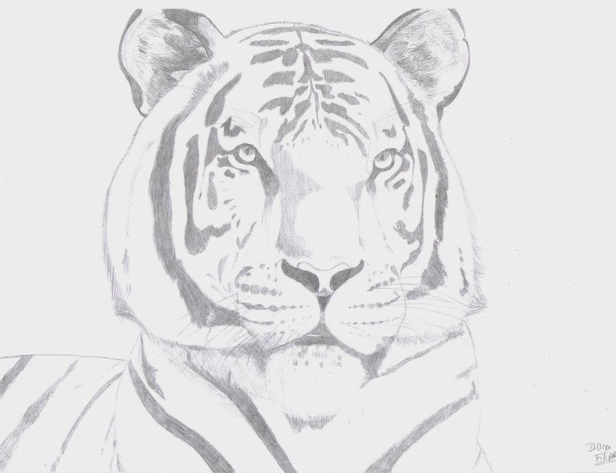 Tiger by DreamerGirlD