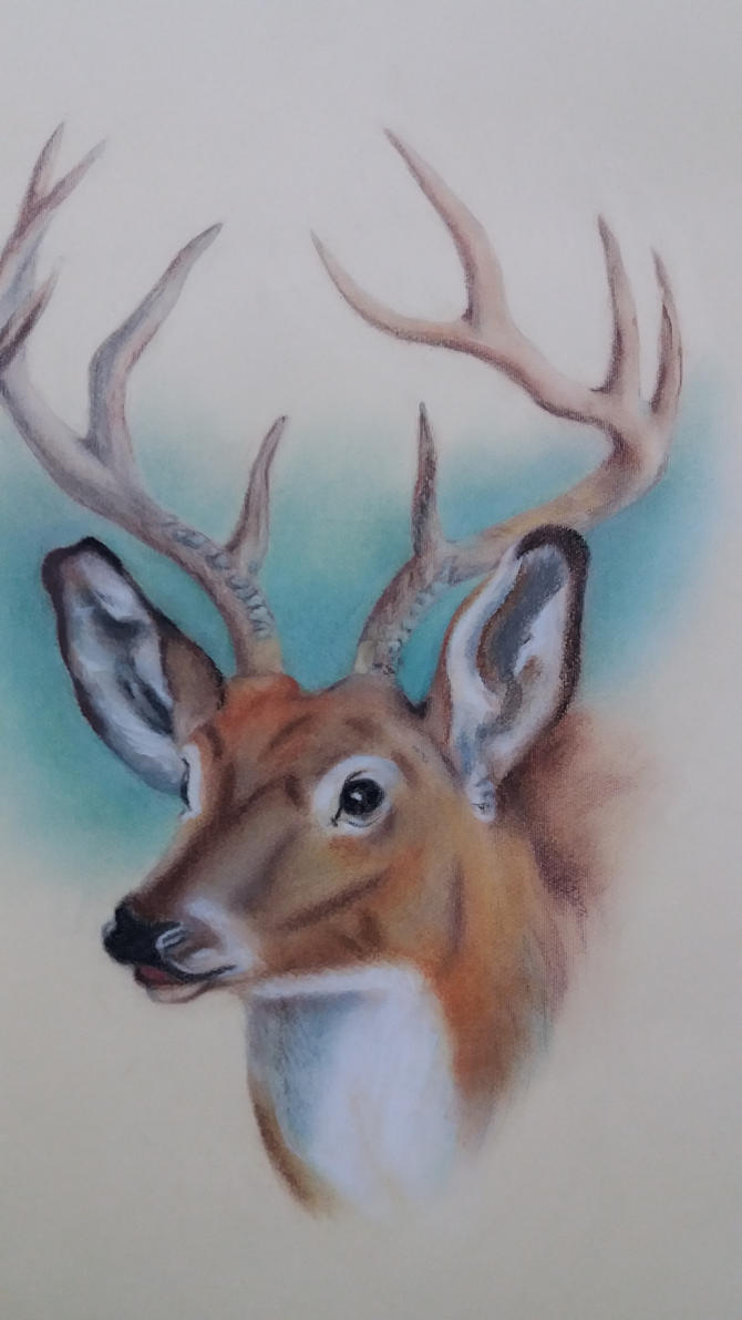 Deer (Almost done) by cher-o-kee