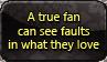 A true fan can see faults