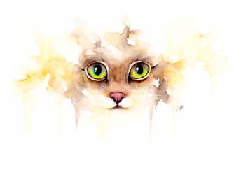 watercolor cat by leamatte