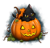 Halloween cat by leamatte