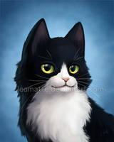Commission : cat portrait by leamatte