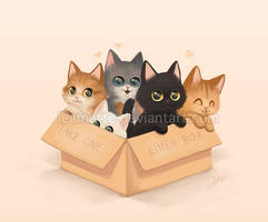 Free kitten by leamatte