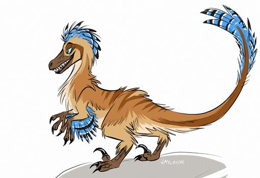 Jayraptor