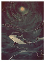 shark by fresh4u