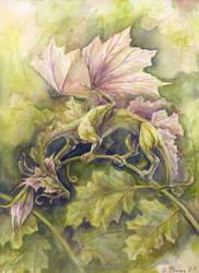 dragon flower by unkraut