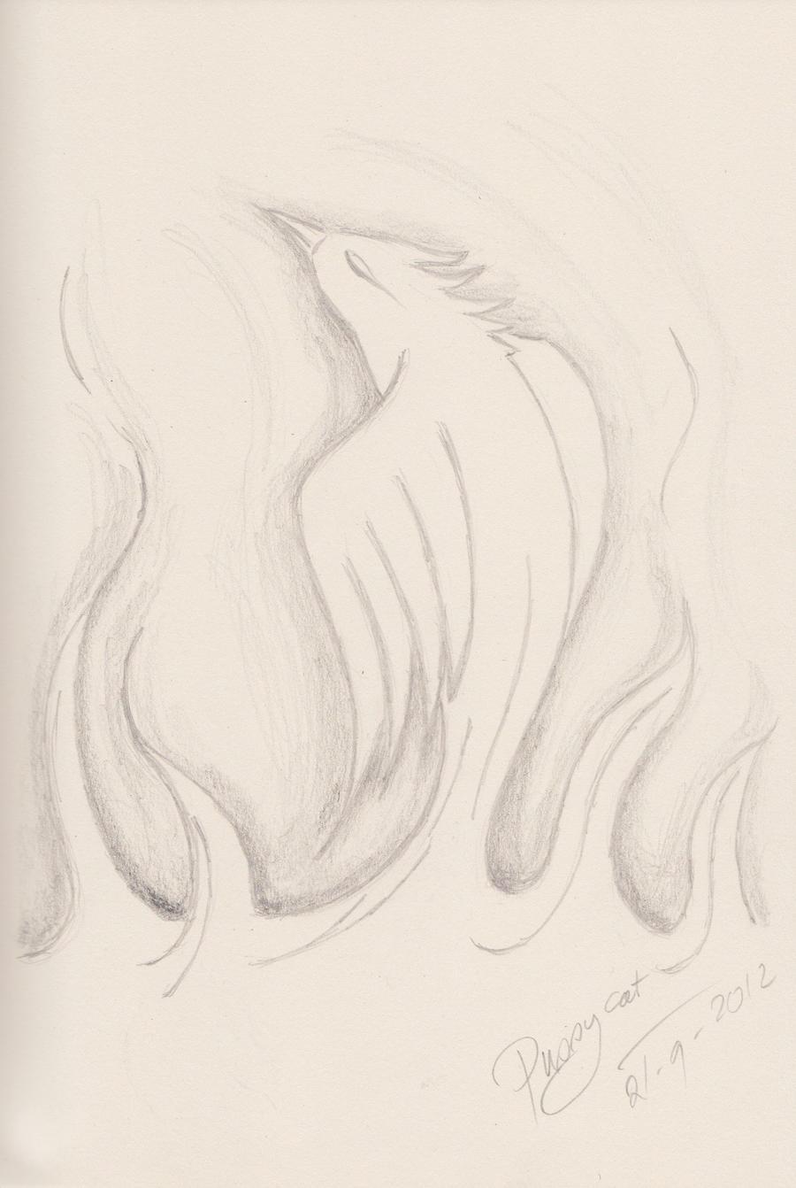 Haunted Phoenix by threepussycats