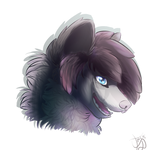 CO: lonerwolf35