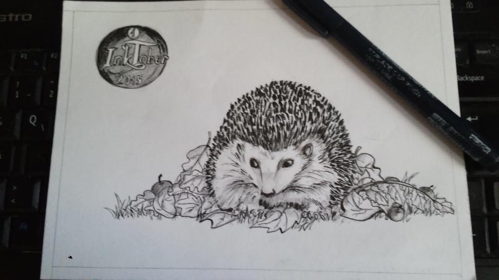 INKtober_1_Hedgehog by Xanarachne