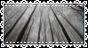 Monochrome Forest - Stamp