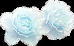 Pastel Blue Rose - Deco
