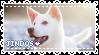 Korean Jindo Dog - Stamp by candlelit-deco