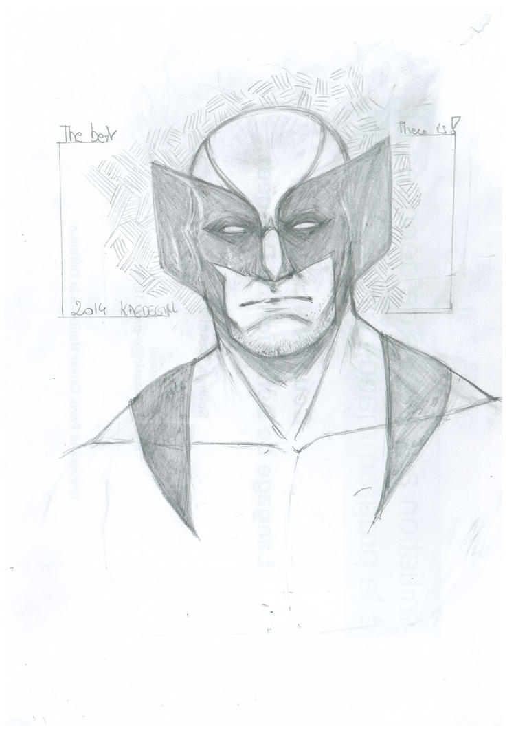 Wolverine 30 by Kaedegirl