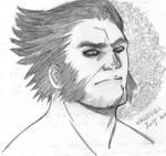 Wolverine 31
