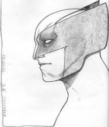 Wolverine 48