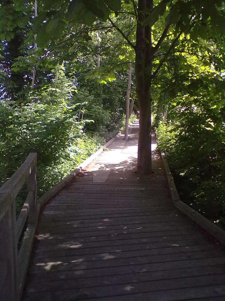 The Tree Bridge by JohanneLarsen