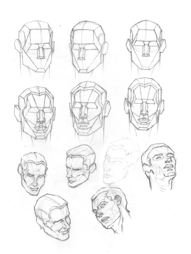 Human Head Plates 2 by Atlas0 on DeviantArt