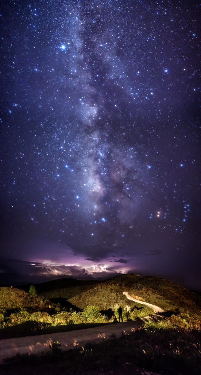 The Milky Way of War Elephant by palmbook
