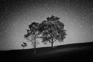 The Hill of Stars by palmbook