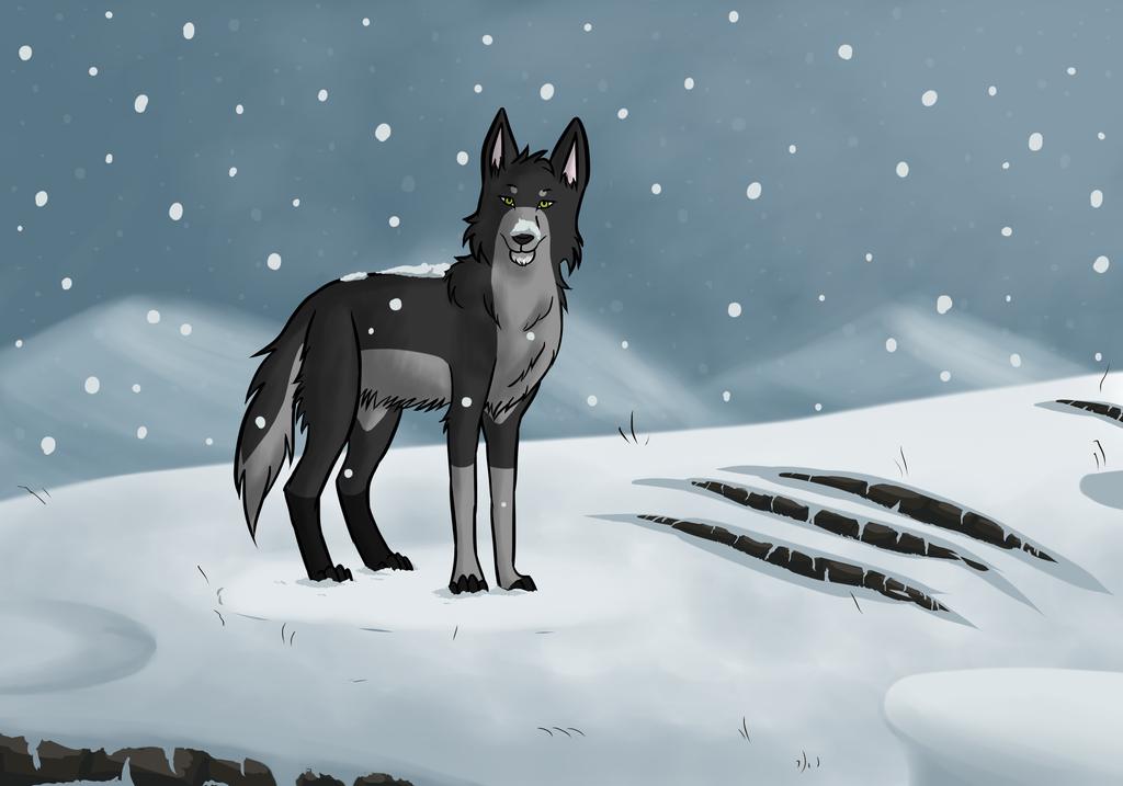 Snowfall by Duskysunset