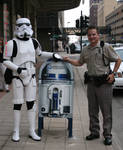 TK 1115 Meets the Law