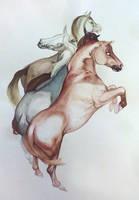 Apollo's Mares by Smirtouille