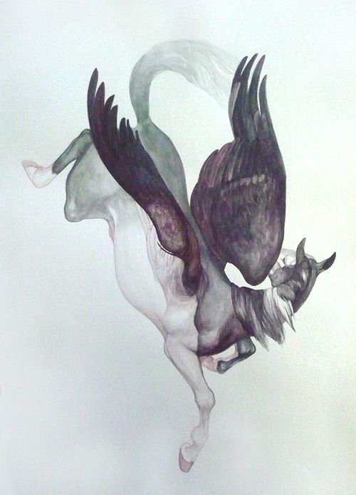 Pegasus by Smirtouille