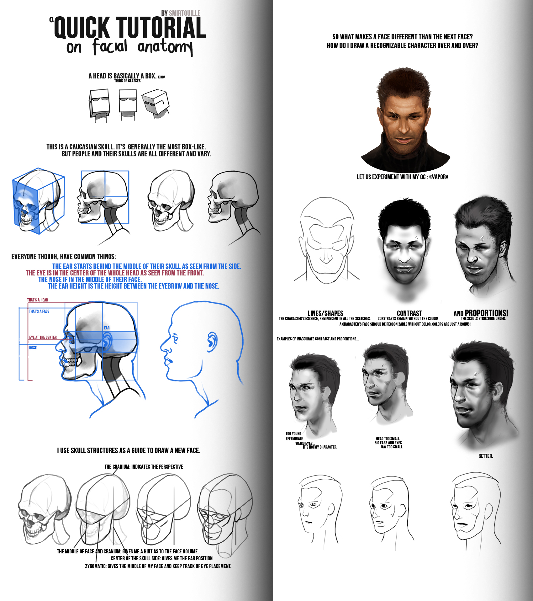 Quick Facial Anatomy Tips II by Smirtouille