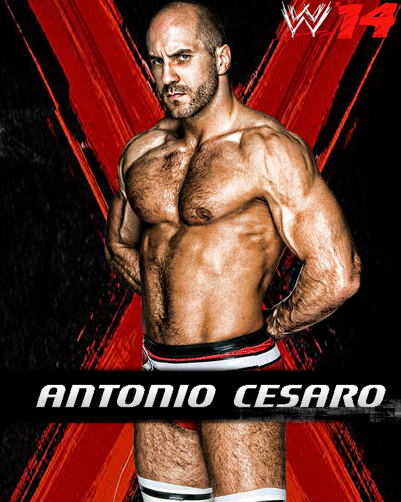 WWE '14 Custom 8x10 Promo By Cmpunkster