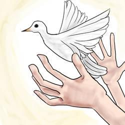 Peace by MegJ