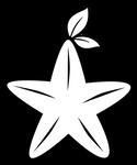 Paopu Fruit line art
