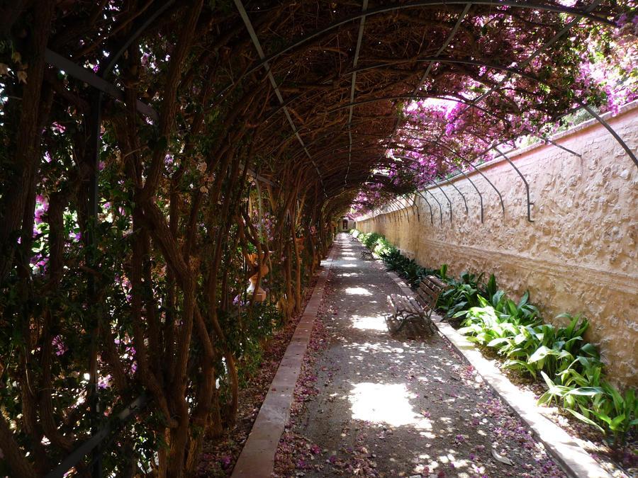 Jardines de monforte 2 by moifee on deviantart for Jardines de monforte