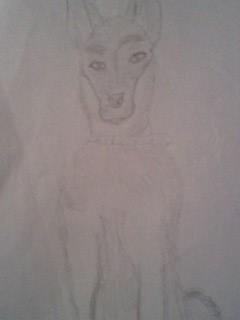 German Shepherd by amuos50