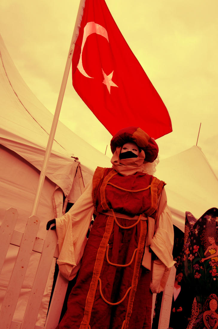 Turkish Pride by Your-legal-drug