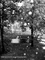 The Rain by Minigeg