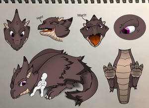 Wyvern Character