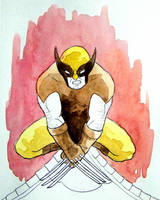 Wolverine  by rjessup