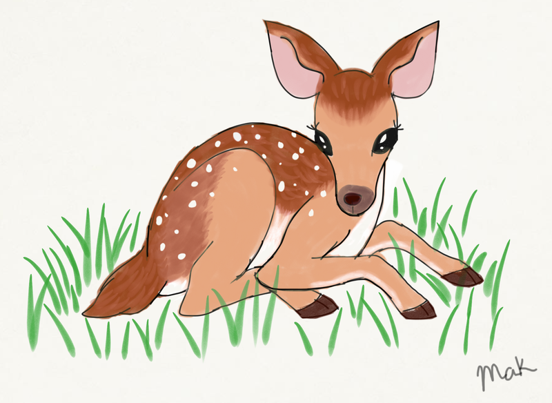 deer fawn sketch by makcake