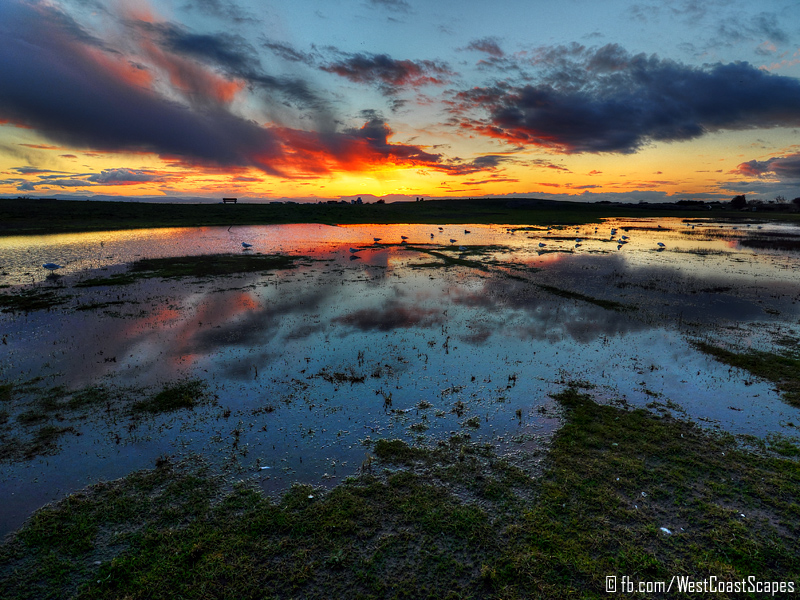 Scenic Puddle by IvanAndreevich