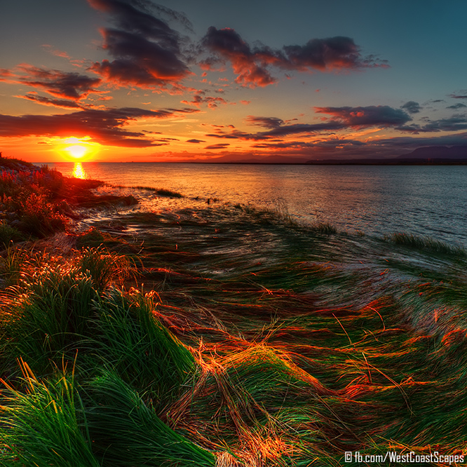 Grassflow by IvanAndreevich